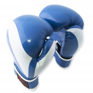 Перчатки боксерские Europaw PVC 12 oz